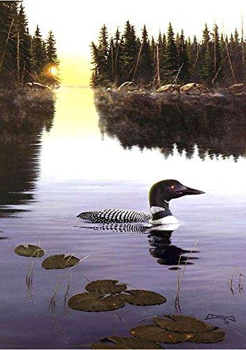 (Toland Home Garden First Light Loon Decorative Birds/Outdoors Garden Flag, 12.5