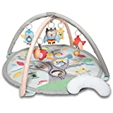 Skip Hop Treetop Friends Baby Play Mat Activity Gym, 36' X 19'H, Grey/Pastel