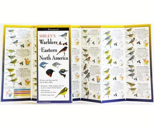 Steven M. Lewers & Associates Sibley's Warblers of Eastern N