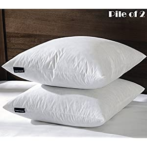 BASIC HOME 24X24 Euro Feather & Down Pillow Insert, 100% Cotton Fabric, Set of 2, White