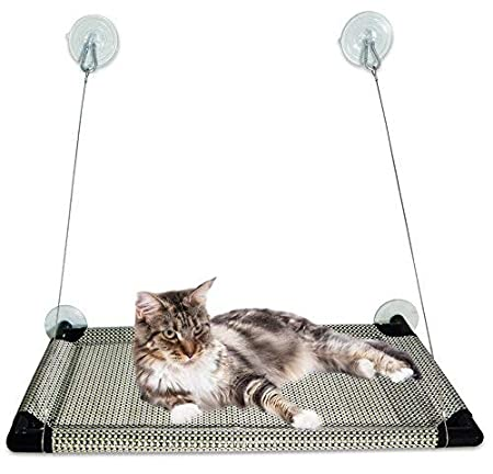 Amazon.com : Kalmia Premium Cat Window Perch| Large Bed Hammock Design for Any Cat Size| Deluxe Waterproof Breathable Woven Fabric| Giant Suction Cups| Just ...