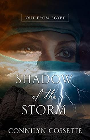 book cover of Shadow of the Storm
