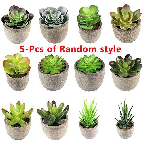 5 Plantas suculentas Artificiales, pequeñas Cactus Falsas con macetas Grises, Ideal para el hogar, la Oficina y la...