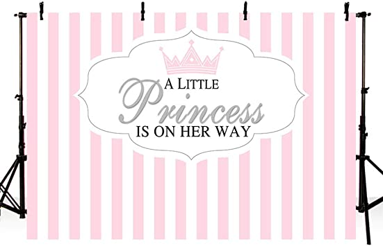 10x6.5ft Baby Shower Photo Backdrop for Girl Sweet Pink Gridding Pattern Photography Background Little Princess is on its Way Crown Party Decoration Banner Photoshoot Booth Props
