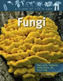 img - for Fungi: Mushrooms, Toadstools, Molds, Yeasts, and Other Fungi (Class of Their Own (Paperback)) book / textbook / text book