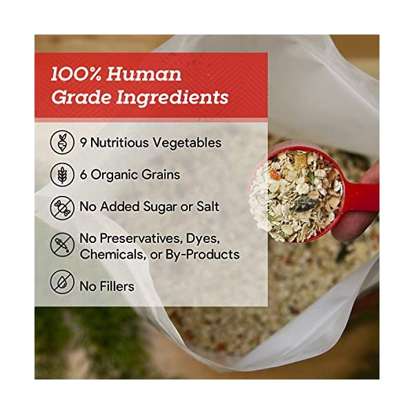 Dr. Harvey's Canine Health Miracle Dog Food, Human Grade Dehydrated Base Mix for Dogs with Organic Whole Grains and Vegetables 3