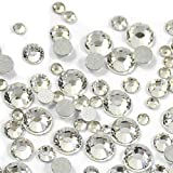 3124pcs Nail Art Rhinestones Crystal Clear Flat Back Circular Glass Studs Stones for 3D Nails Art Decorations Manicure Tools 1.3mm-4.7mm (Crystal Clear 2 Pack)