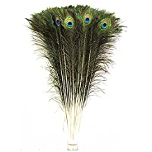 Celine lin 50 PCS Real Natural Peacock Tail Feathers,30-32Inches