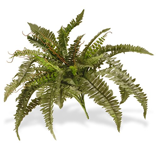 National Tree 26 Inch Garden Accents Green Boston Fern Bush (GABF30-26G) by National Tree Company