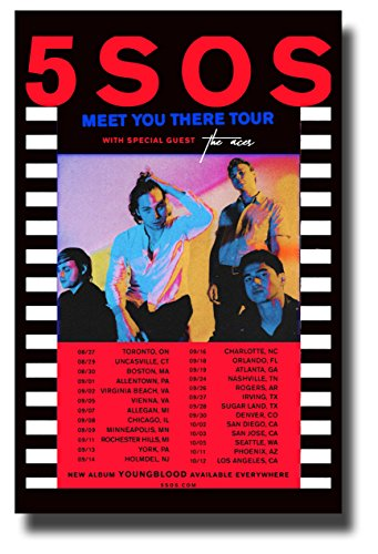 - 5 Seconds of Summer 5SOS Poster Concert Promo 11 x 17 inches Five Meet You There Tour