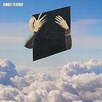 Buried Feather (Black Vinyl/180 Gr/Gtf) [Vinyl LP]