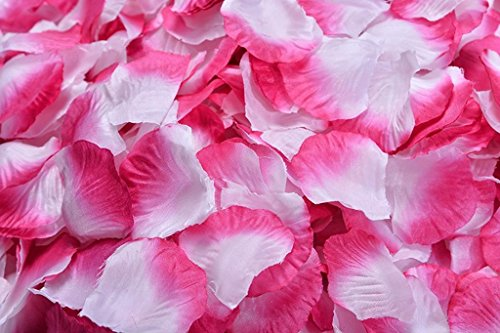 4000 Silk Roses (La Tartelette Silk Rose Petals Wedding Flower Decoration (4000 Pcs, Hot Pink and White))