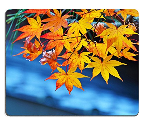 Price comparison product image Luxlady Natural Rubber Gaming Mousepads Nice Orange Maples IMAGE ID 26047910