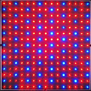225 Blue Red Indoor Garden Hydroponic LED Grow Light Panel Aquarium Lamp