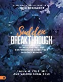 Sudden Breakthrough (Large Print Edition): Decrees, Prayers, and Confessions to Access Your Suddenly Moment