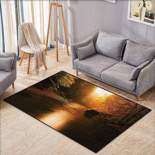 Pet Rug,Lake House Decor Collection,Calm Autumn Forest with Flowing River Sunlight Pine and Oak Trees Sunlight Branches,Extra Large Rug,5'3