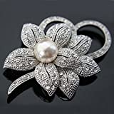 Description: Item color: White Item Material: Alloy Item size: Length about 6cm wide about 4.5cm error about 0.5cm Feature:  A beautiful and amazing attractive shining jewelry brooch.  This brooch pin is elegant and shiny, a very good present for gir...