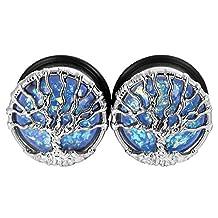 "D&M Jewelry 2pcs Stainless Steel Ear Plugs Tunnels Stretcher Expander Gauge Ear Piercing 00g-1"""
