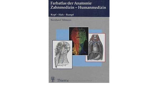 Farbatlas der Anatomie Zahnmedizin / Humanmedizin. Kopf - Hals ...