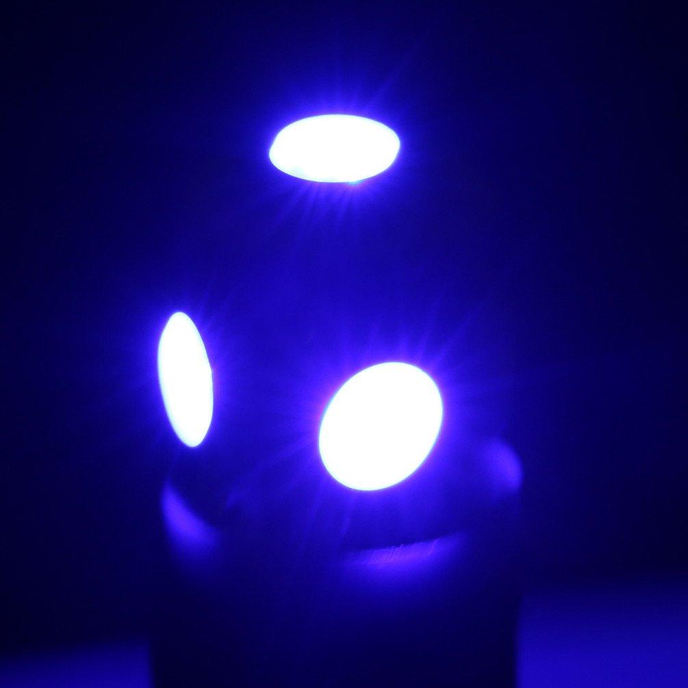 10 pcs LIMASTAR T10 Can-bus Led Bulbs 5 SMD 5050 Blue Light for Interior Lamps 12V