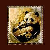 Panda Bear Medium Weight 2.1kg (4.6lbs) Blanket