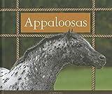 Appaloosas (Majestic Horses)