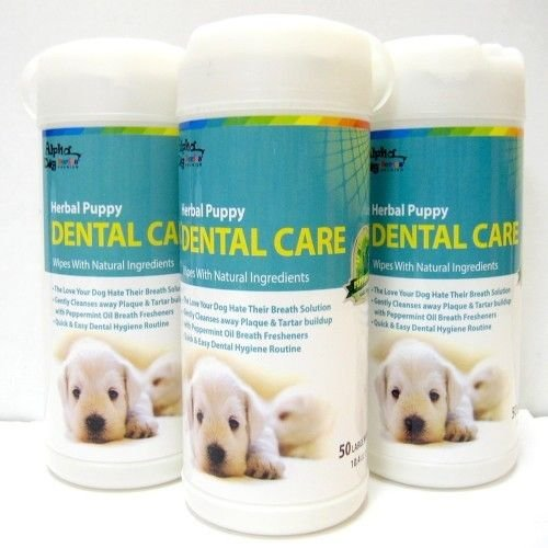 Alpha Dog Series Dental Wipes (Pack of 3) by Alpha Dog Series