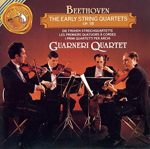 String Quartet No. 3 in D Major, Op. 18, No. 3: III. Allegro