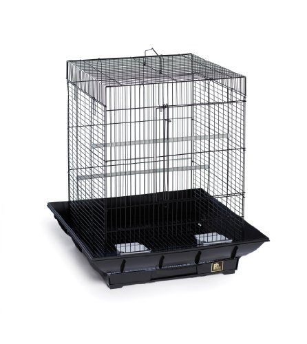 Prevue Hendryx SP850B/B Clean Life Cockatiel Cage, Black by Prevue Hendryx