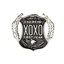 KPOP EXO accessories first album XOXO fanmade 3D badge Eco-friendly resinic brooch