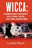 Wicca: A Beginner's Guide to Becoming a Solitary Practitioner