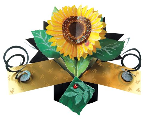 (SECOND NATURE POP UPS - 042 - SUNFLOWER - Greeting Card)