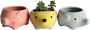 Youfui Cute Animal Succulent Planter Flower Pot Decor for Home Office Desk (Pig+Elephant+Hedgehog)