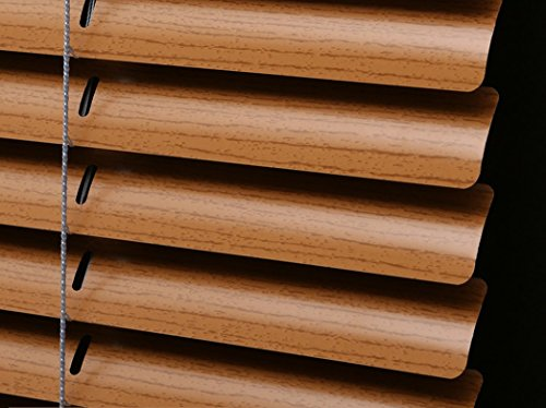 PASSENGER PIGEON Horizontal Window Blinds, Superior Blackout Light Filter Aluminum Blinds Custom-Made Water Rust Proof Fire Resistant Mini Blinds, 1 Inch Slats, 60