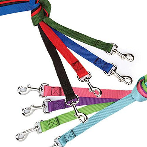 Zack & Zoey Dog Lead LEASHES Bulk LOT Packs Litter Rescue Shelter - Choose Size & Quantity (Small - 4 Ft x 5/8 Inch 40 Leads)