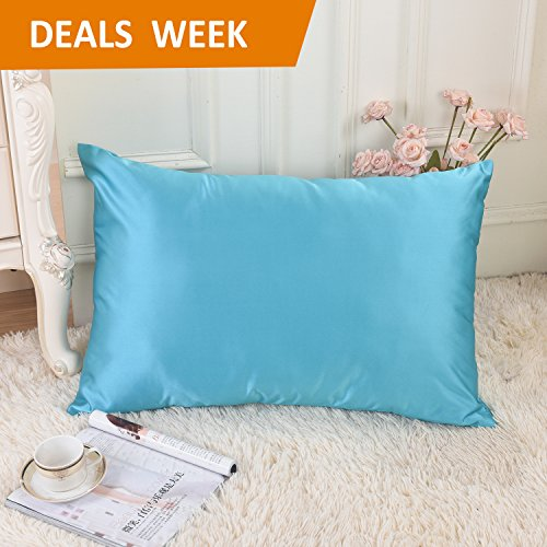 Satin Zippered (Ultra Soft Silky Satin Queen Size Pillowcase for Bedding Decor-Stain/Wrinkle/Fade Free Pillow Case-With Hidden Zipper Closure, 20
