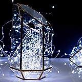 Fairy String Lights, 66Ft 200 LED Firefly Lights