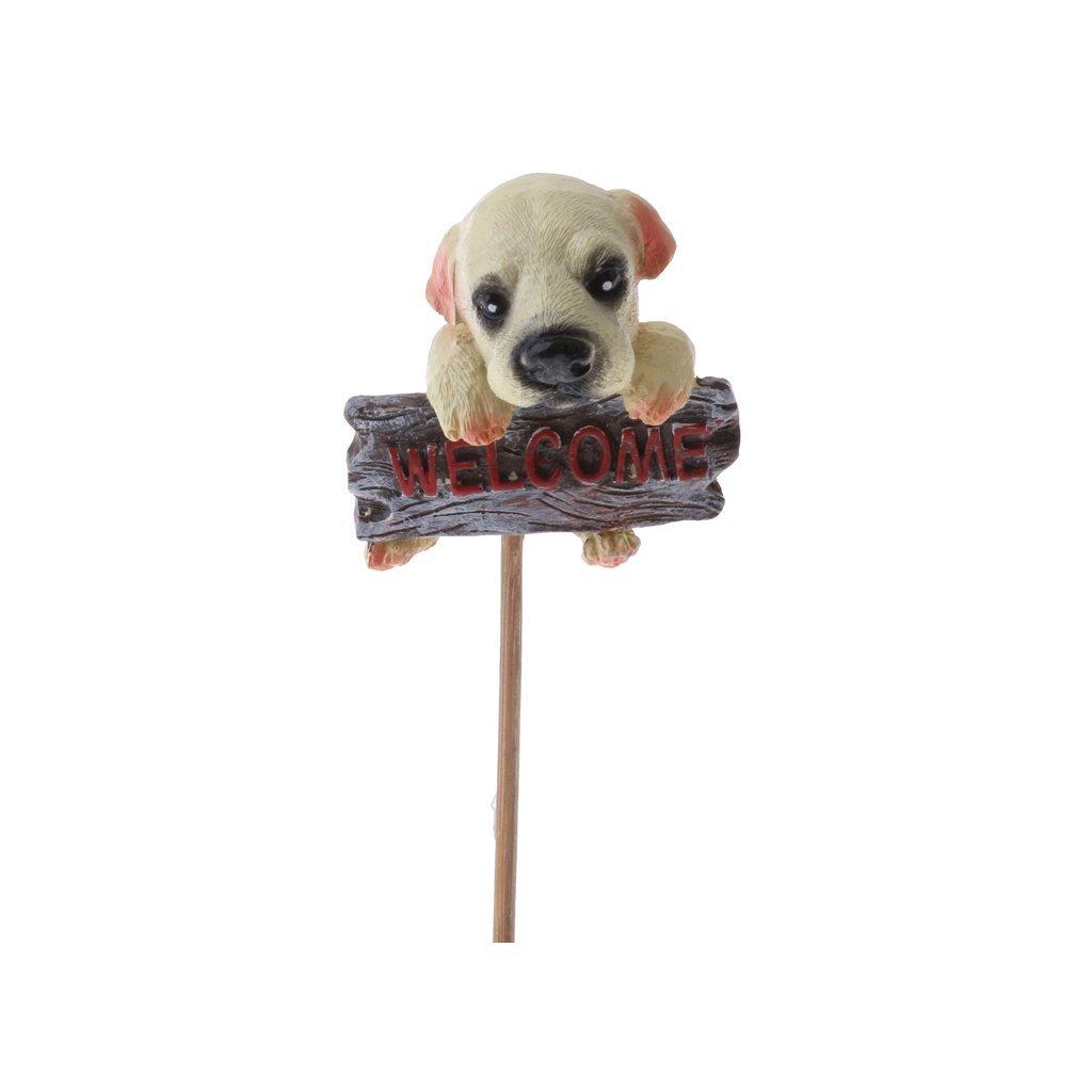 3 Pieces Lovely Dogs Plants Pots Flower Bonsai Planter Desktop Decor Gifts