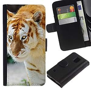EJOY---Tirón de la caja Cartera de cuero con ranuras para tarjetas / Samsung Galaxy S5 V SM-G900 / --Tigre Albino