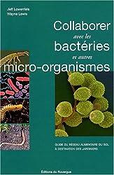 Collaborer avec les bactéries et autres micro-organismes : Guide du réseau alimentaire du sol à destination des jardiniers