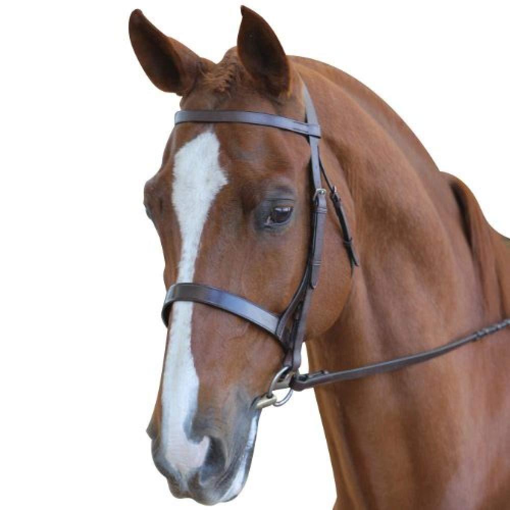 (カレッジエイト) Collegiate 馬用 レザー ハント カブソン ブライドル II 頭絡 馬具 乗馬 ホースライディング フル ブラウン B07K2NGYQP