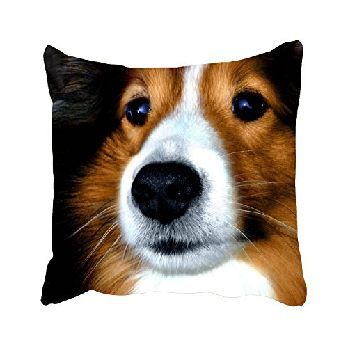 farg Pretty Sheltie personalized Throw Pillow Cases soft cotton Cushion Covers