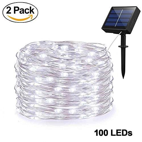 Solar 100 Led White Rope Lights in Florida - 2