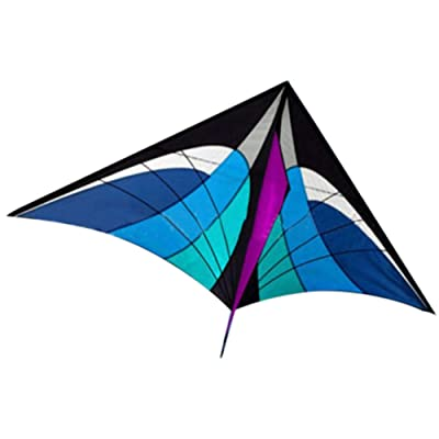 Galand Kite, Multicolor Single Line Kite with Tail Ribbons Flying Outdoor Sports Kids Gift Blue: Home & Kitchen