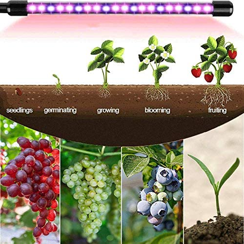 LED Grow Light, KOMAKE 4 Head Timing Grow Light for Indoor Plants 80 LED 9 Dimmable Levels Plant Grow Lamps with Full Spectrum Red Blue Spectrum, 3 9 12H Timer, Adjustable Gooseneck, 3 Switch Modes