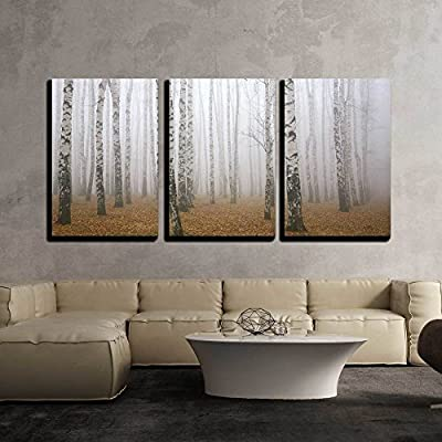 Made With Top Quality, Charming Technique, Morning Mist in Autumn Birch Grove x3 Panels