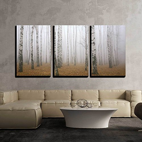 wall26 - 3 Piece Canvas Wall Art - Morning Mist in Autumn Birch Grove - Modern Home Decor Stretched and Framed Ready to Hang - 24