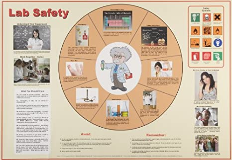 Amazon.com: American Educational Lab Safety Poster: Industrial ...