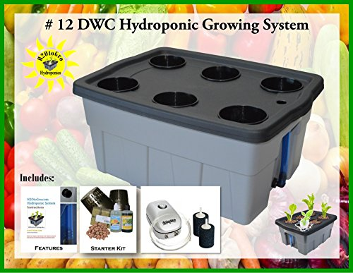 Hydroponic Growing system DWC BUBBLER Kit #12-6 H2OtoGro by H2OToGro