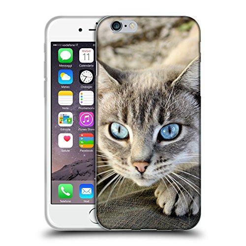 """Just Phone Cases Coque de Protection TPU Silicone Case pour // V00004305 aux yeux bleus chat attrape des jeans // Apple iPhone 6 6S 6G PLUS 5.5"""""""